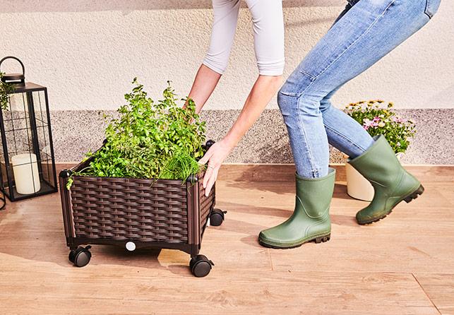 Grow Planter Box