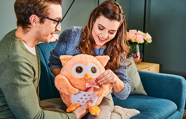 Dromeo Emotion Owl Couple